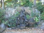 千葉公園 石と水。