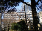 羽衣公園(県庁前)