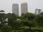 見浜園からセントラルパークタワー